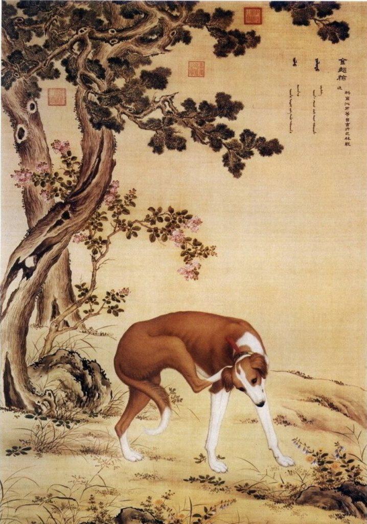 jaar van de hond schilderwedstrijd