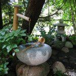 Japanse tuin Fokko Jelsma