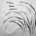 Dansende inktstreken op rijstpapier