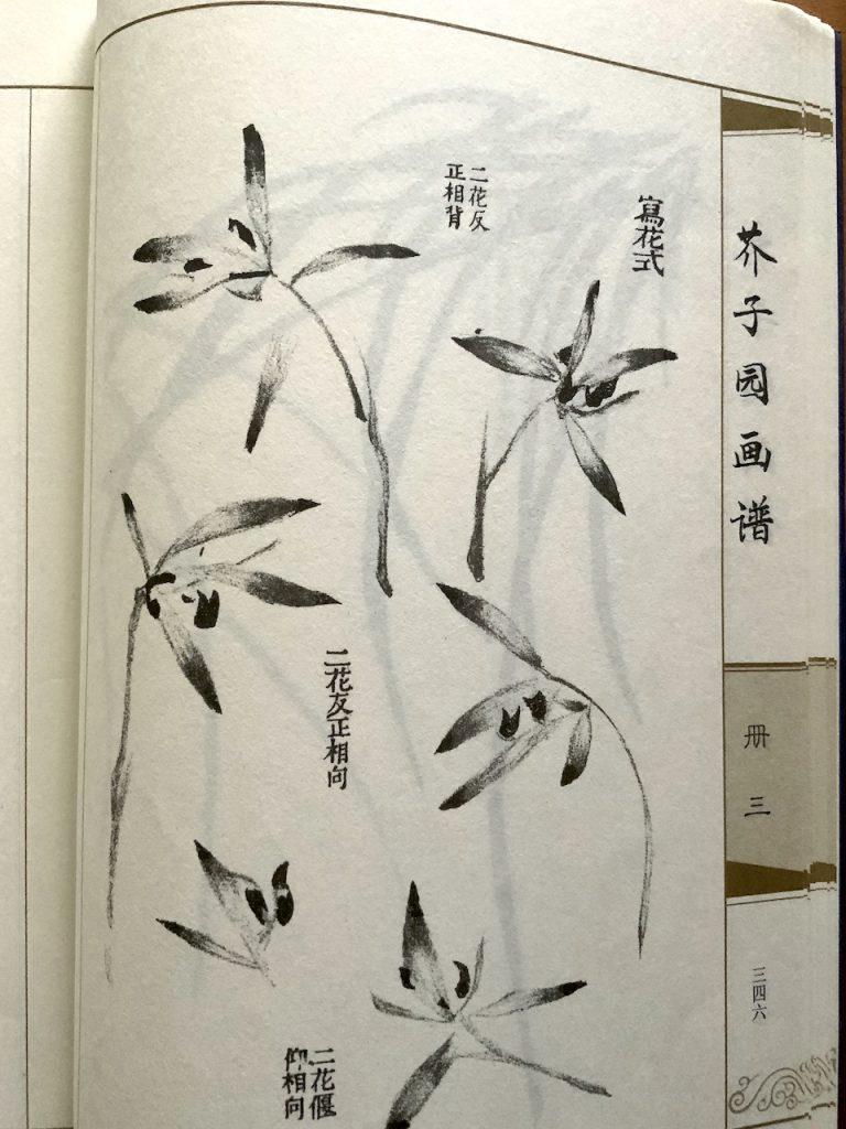 Mosterdzaadtuin orchideeën in grijstonen