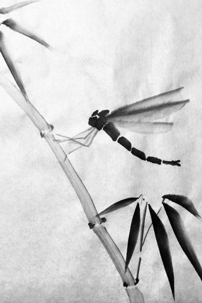 Libelle in sumi-e stijl